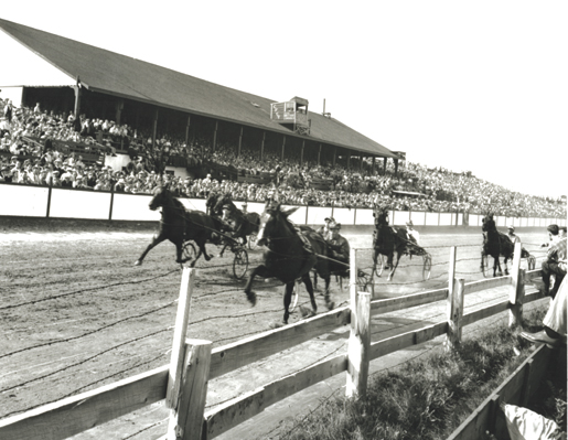 Harness racing in P.E.I., 1945. [PHOTO: JOHN MAILER, LIBRARY AND ARCHIVES CANADA—PA129268]