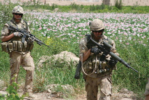Bravo Company soldiers move through the ever-present poppy fields. [PHOTO: ADAM DAY]