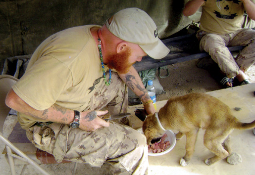 Doyle befriends a dog in Kandahar in 2008. [PHOTO: COURTESY NICOLE DOYLE]