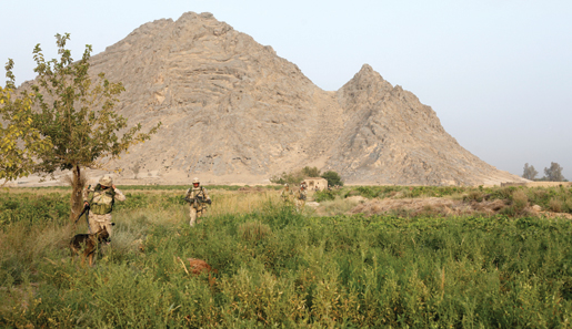 The patrol winds into Karakolay. The mountain in the background is Salavat Ghar. A Canadian sniper team is hidden among the rocks somewhere up there. Moments before this picture was taken, they fired their first round of the day which cracked over the patrol's heads and killed an insurgent hiding a few hundred metres ahead. [PHOTO: ADAM DAY]