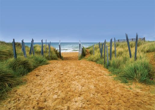 Juno Beach. [PHOTO:©iStockphoto/ballycroy]