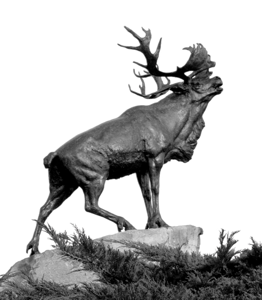 The Beaumont Hamel (Newfoundland) Memorial. [PHOTO: SHARON ADAMS]