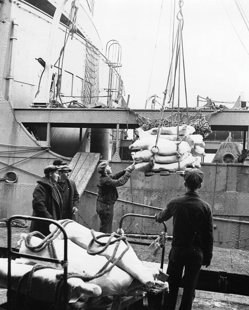A pork shipment is loaded onto a merchant ship at Halifax. [PHOTO: R. WRIGHT, LIBRARY AND ARCHIVES CANADA—PA184171]