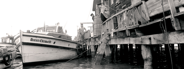 Japanese-Canadian fishing boats are impounded at Steveston, B.C., December 1941. [PHOTO: LIBRARY AND ARCHIVES CANADA—PA170509]