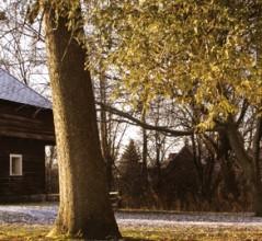 Lacolle blockhouse [PHOTO: DAN WARD]