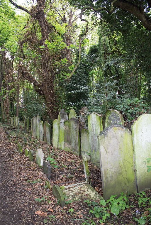 Large headstones fill a small part of Tower Hamlets Cemetery in London's East End. [PHOTO: DAN BLACK]