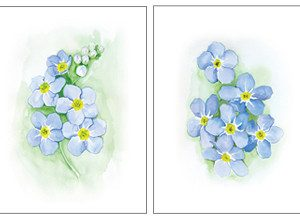 ForgetMeNot_DuoV2_Large_and_Small