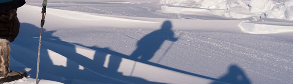 Our vulnerable Arctic