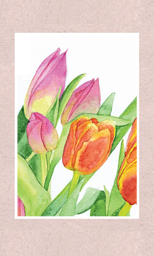 Tulips - Rectangle - 1
