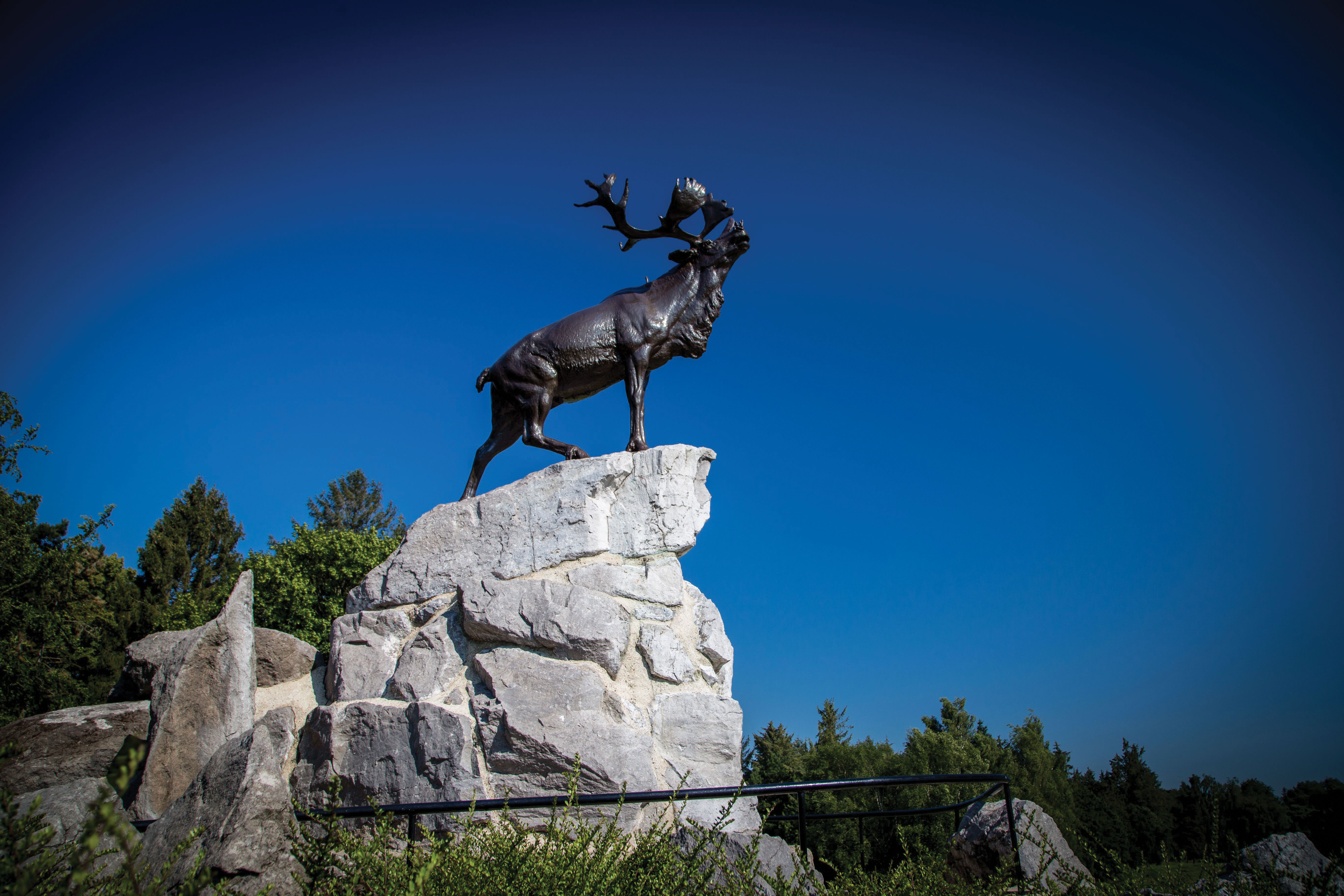 Padre of the Newfoundland Regiment honoured