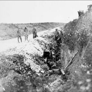 Was the Newfoundland Regiment sacrificed at Beaumont-Hamel?