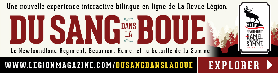 Web Banner Ad BH-French
